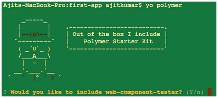 Polymer Project Generation