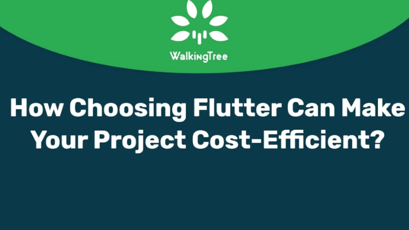 How choosing Flutter can make your project cost-efficient 1