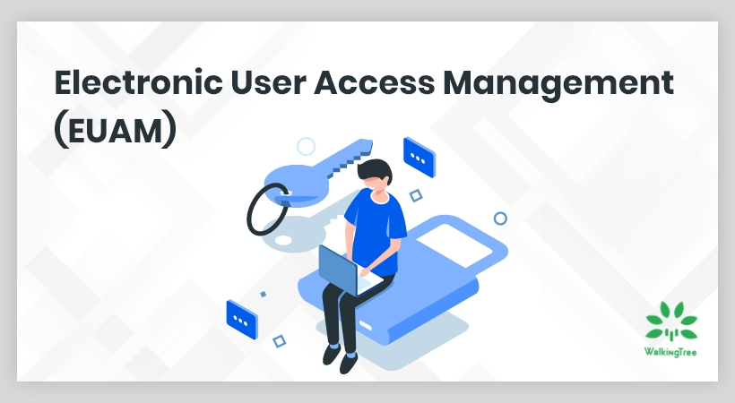 Advancing Business Workflow with Electronic User Access Management (EUAM)